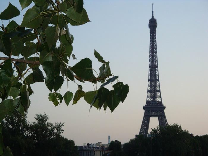 На учебу во Францию