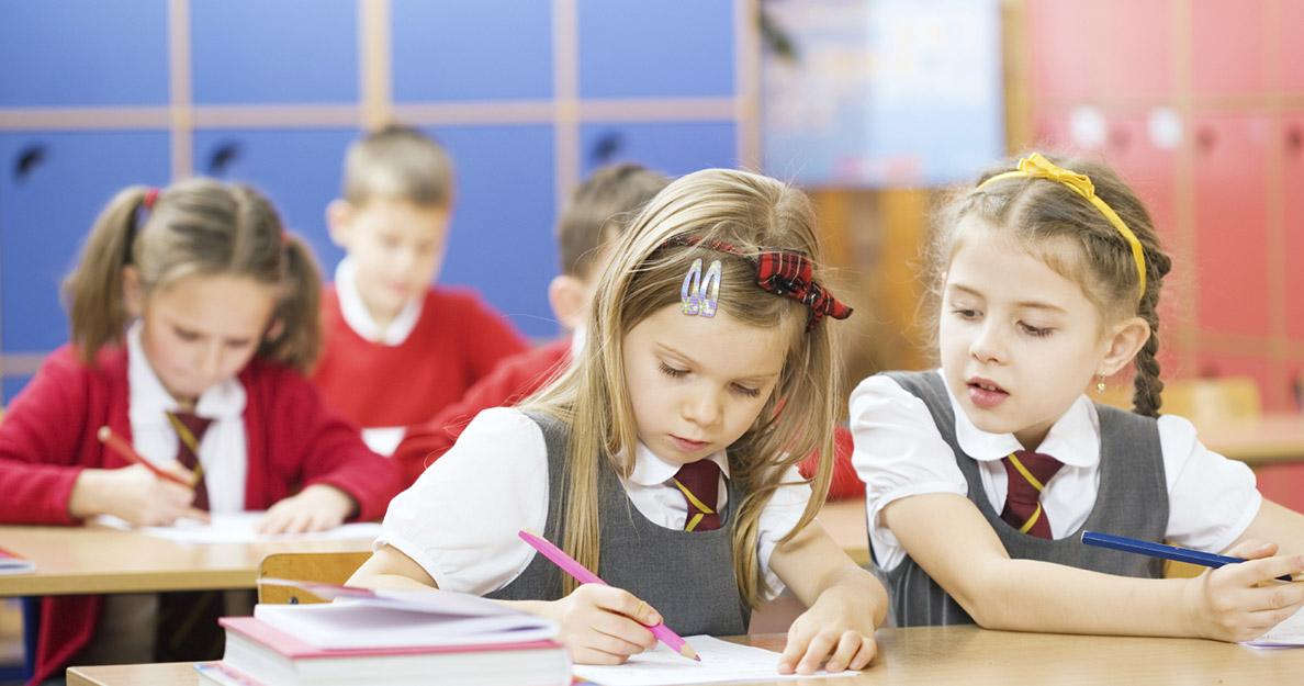 Система образования. Проблемы и точки роста