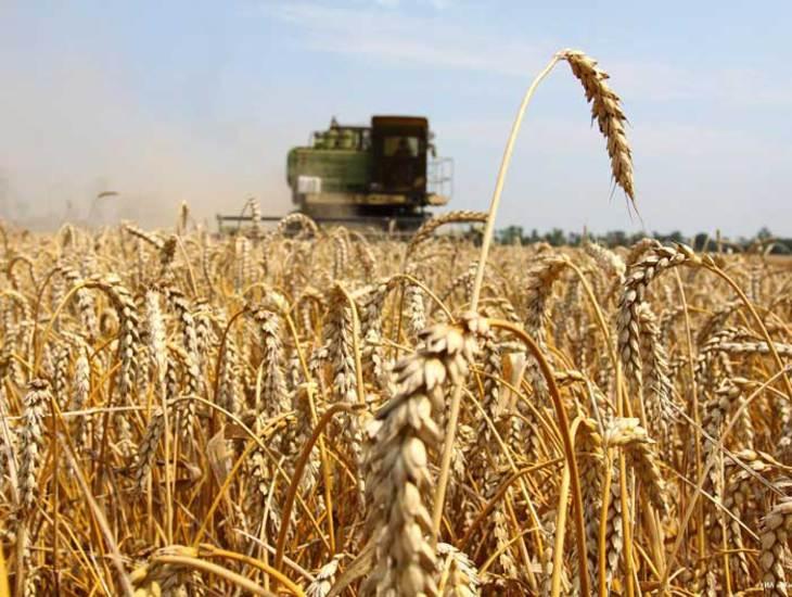 Оперативная информация о проведении сельхозработ  в Республике Дагестан  (по состоянию на 23.09.2016 г.)