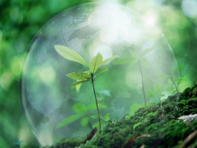 Глава Дагестана поздравил работников природоохранных служб с Днем эколога