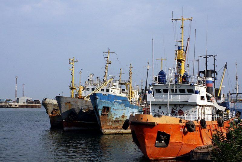 В Махачкалинском рыбном порту за год можно будет ловить до 100 тысяч тонн рыбы
