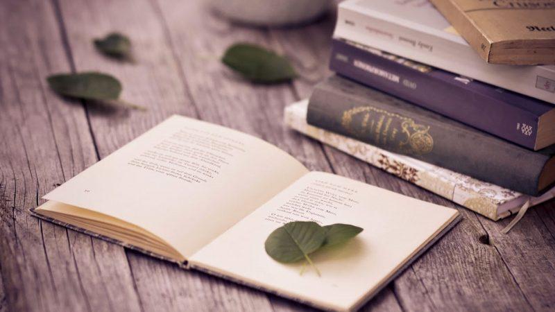 Дни дагестанской поэзии пройдут в Адыгее