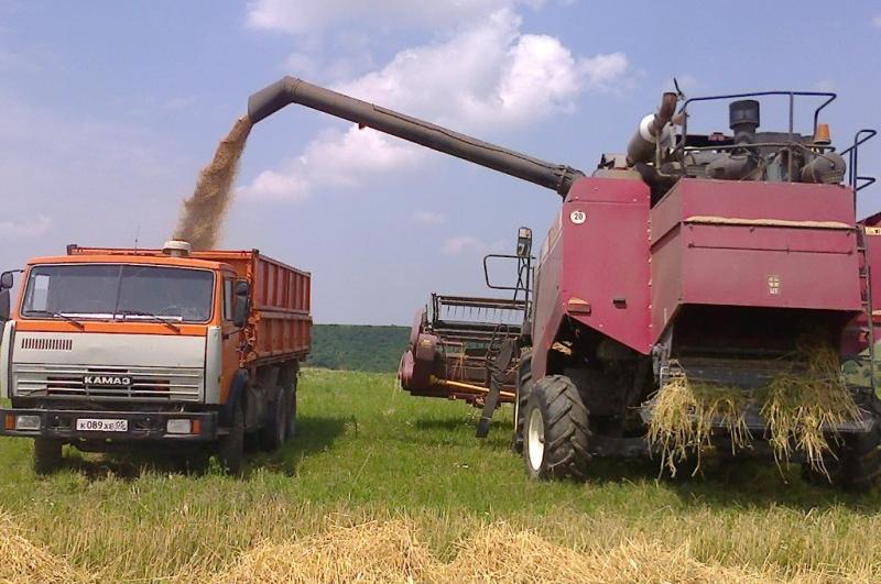 Завершилась уборка озимых зерновых культур в Дагестане