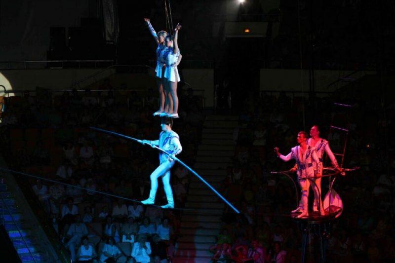В Дагестане откроют цирк и студии канатоходцев