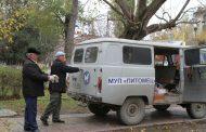 В Махачкале за 9 месяцев отловили около 900 бездомных собак