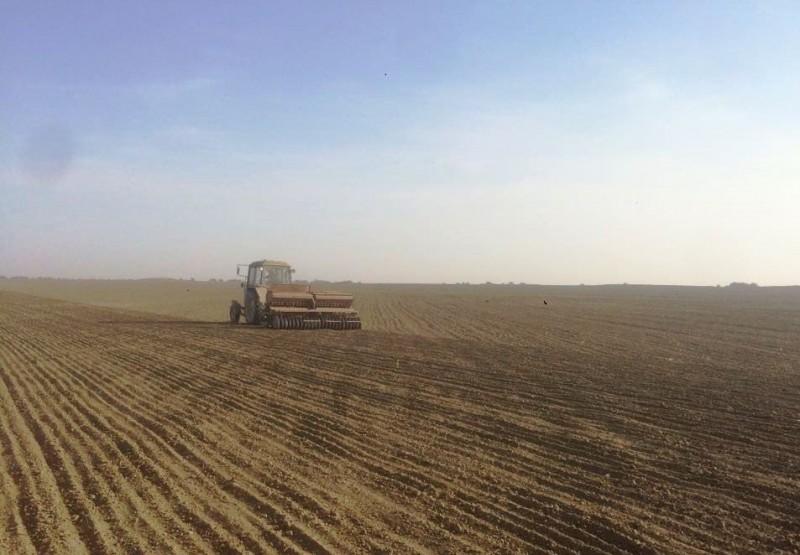 В Дагестане активно идет сев озимых зерновых культур
