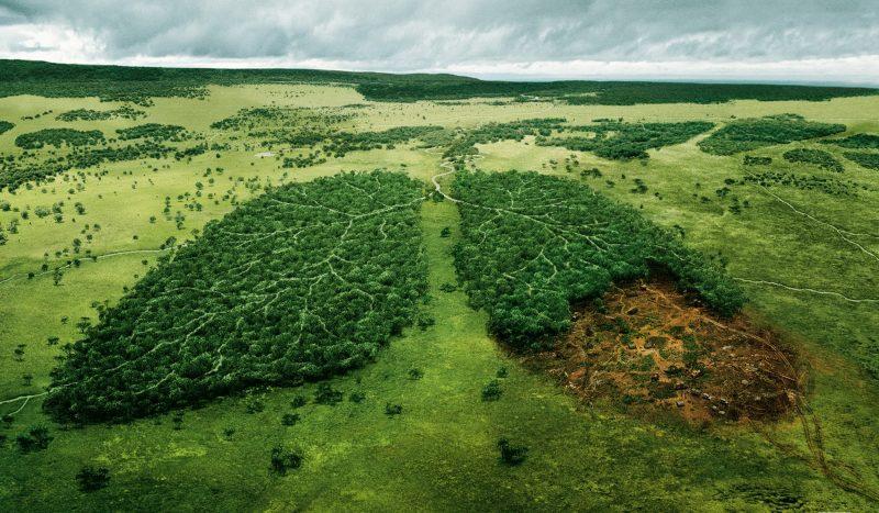 Махачкала заняла последнее место в экологическом рейтинге городов