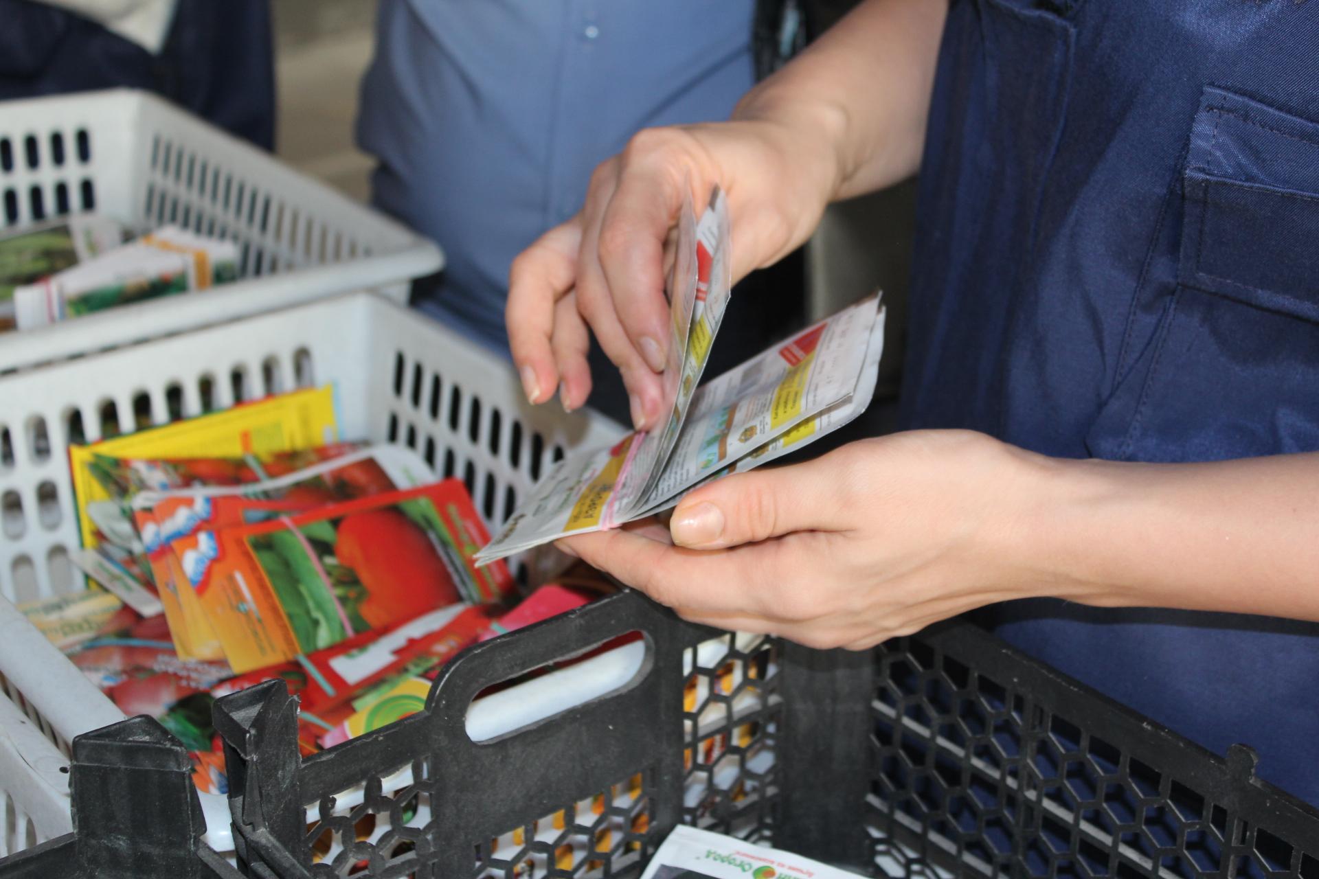 Продавцы некачественных саженцев и семян оштрафованы в Дагестане