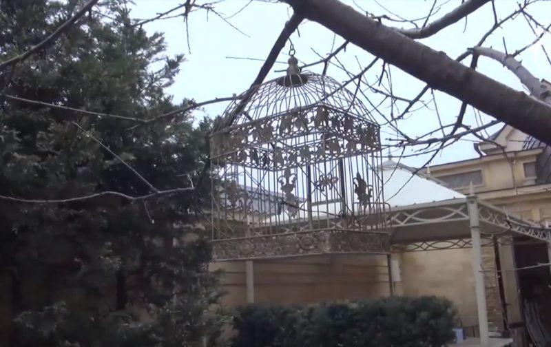 Оперативная съемка задержания членов правительства (видео)