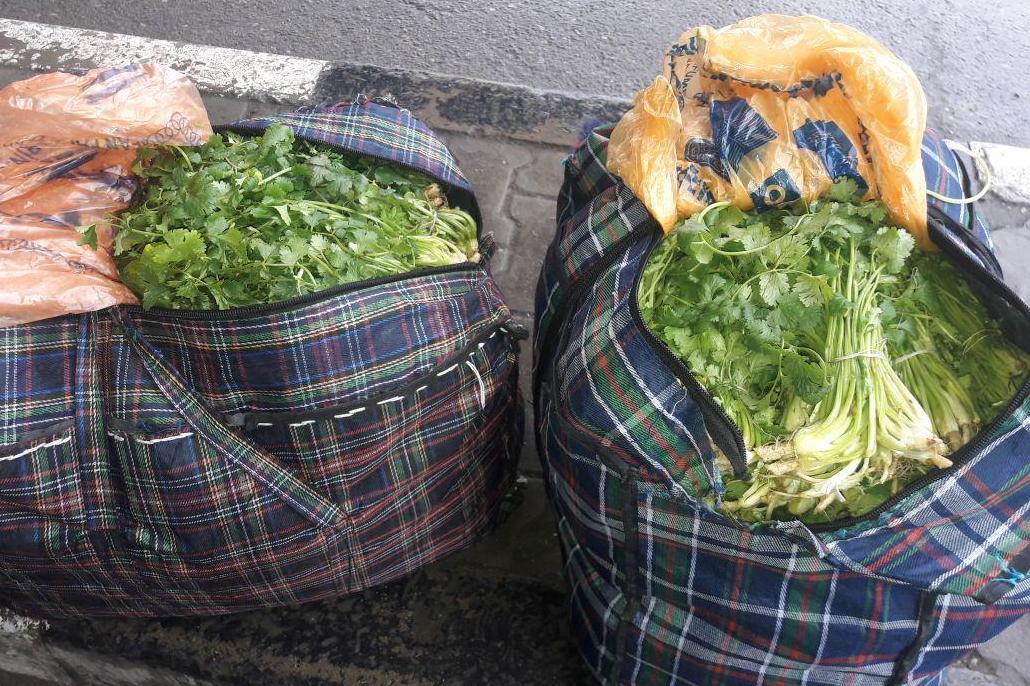 Предотвращен ввоз в Россию около 600 кг потенциально опасной растениеводческой продукции
