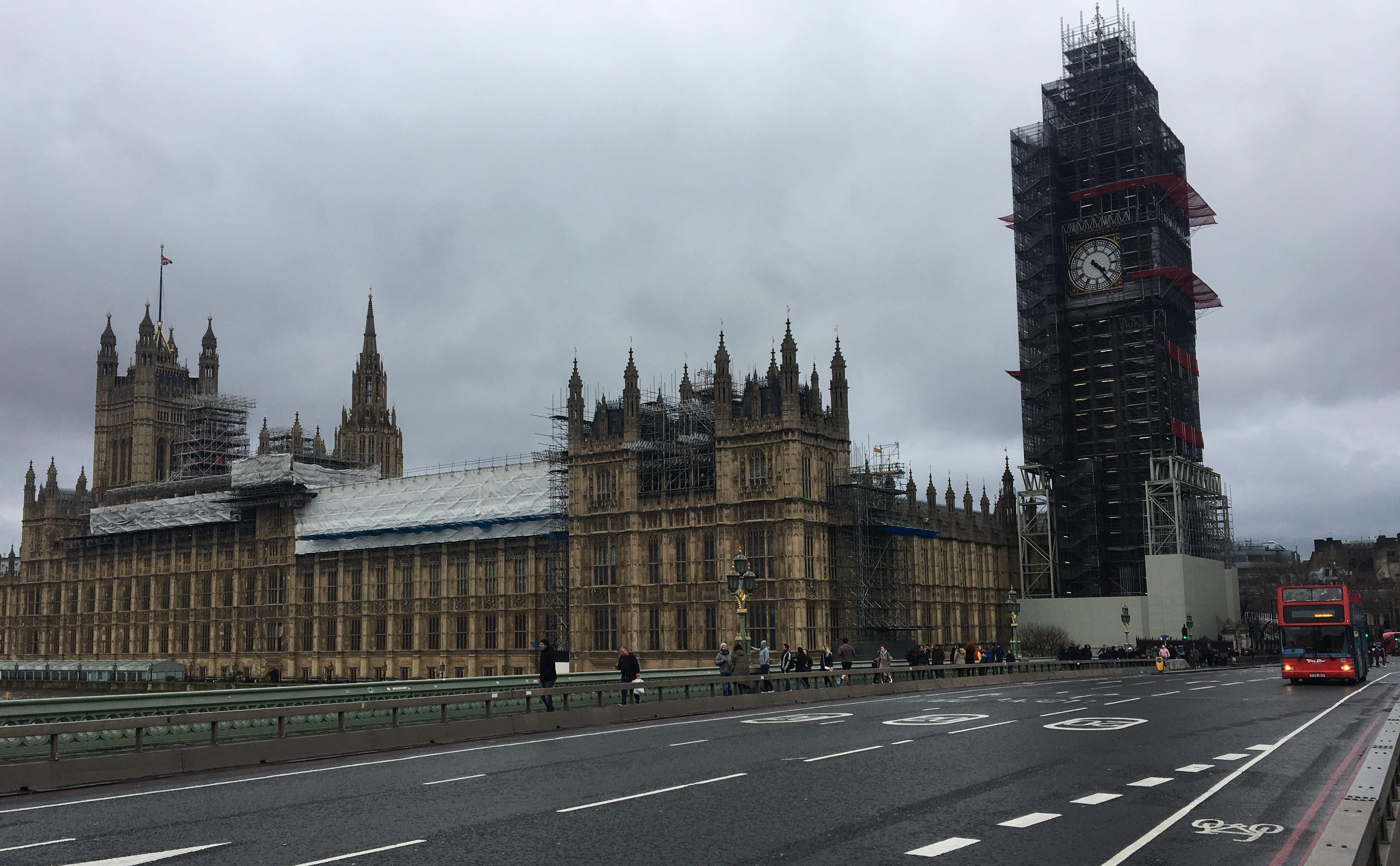 Ежи в тумане. Уроки выживания в Лондоне