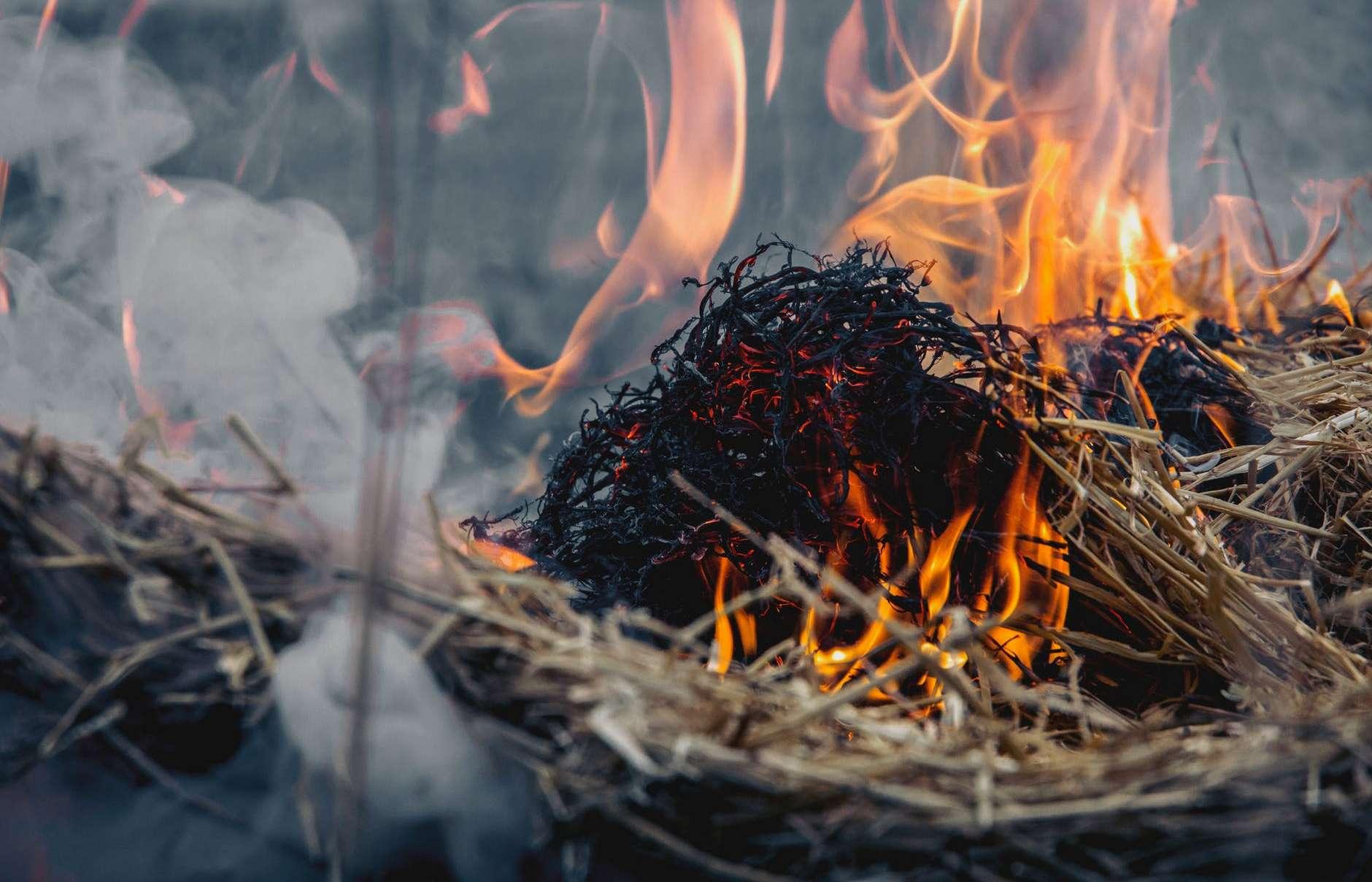 В Ногайском районе загорелась сухая трава