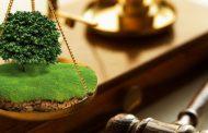 Бывший глава села осужден условно за незаконное выделение участка своей жене