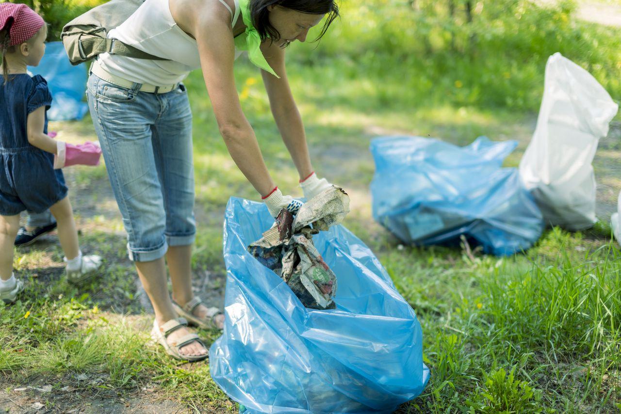 Картинка сбор мусора в лесу