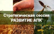 Развитие АПК Дагестана станет темой Стратегической сессии