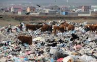 Дагестану грозит мусорный коллапс