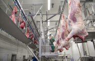 В Дагестане планируется построить комплекс по убою скота