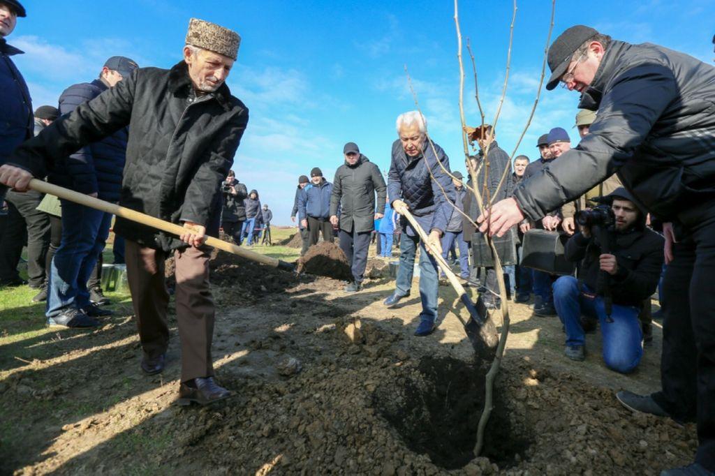 Владимир Васильев: Посадить дерево может каждый