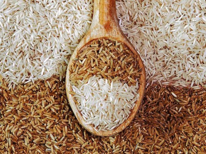 В Дагестане запущено два завода по переработке риса