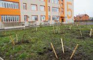 Избирком Дагестана поддержал акцию «Зеленые километры»