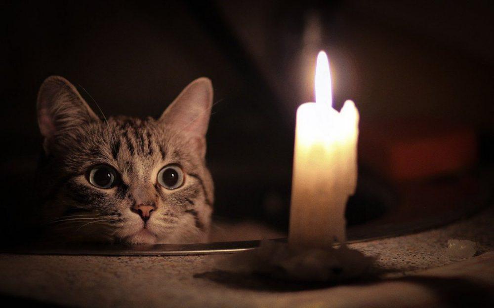 Более 120 населенных пунктов в Дагестане остались без света