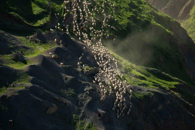 Фотограф из Дагестана победил в конкурсе National Geographic