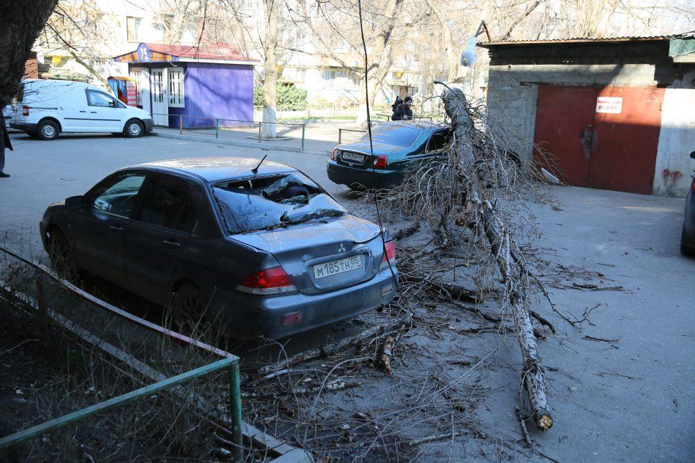 Поваленные деревья, рухнувший балкон... Штормовой ветер оставил автовладельцев без машин