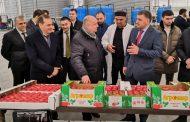 Сергей Чеботарев посетил комплекс «Агромир»