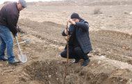 В Ахтынском районе прошла акция «Зеленые километры»