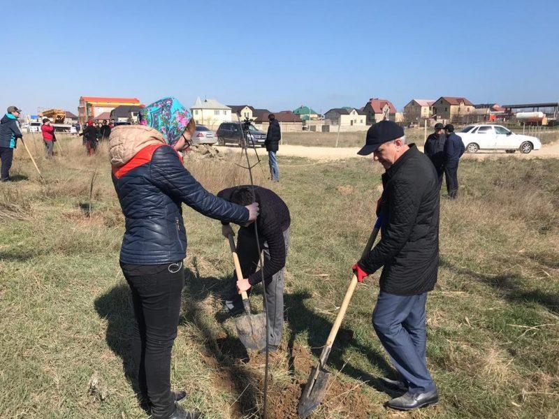Избербаш присоединился к акции «Зеленые километры»