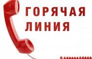 В Дагестане запущена горячая линия по вакцинопрофилактике