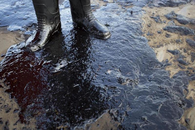 В Каякентском районе на площади более одного квадратного километра разлилась нефть