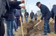В Дагестане состоится сельскохозяйственный субботник