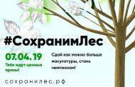 Дагестан - в тройке лидеров Всероссийской акции «Сохраним лес»