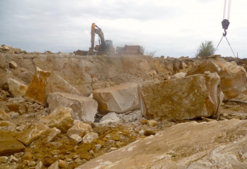 Житель Дагестана заплатит 150 млн рублей за ущерб лесному фонду
