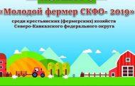 В Дагестане стартовал прием заявок на участие в конкурсе «Молодой фермер года - 2019»