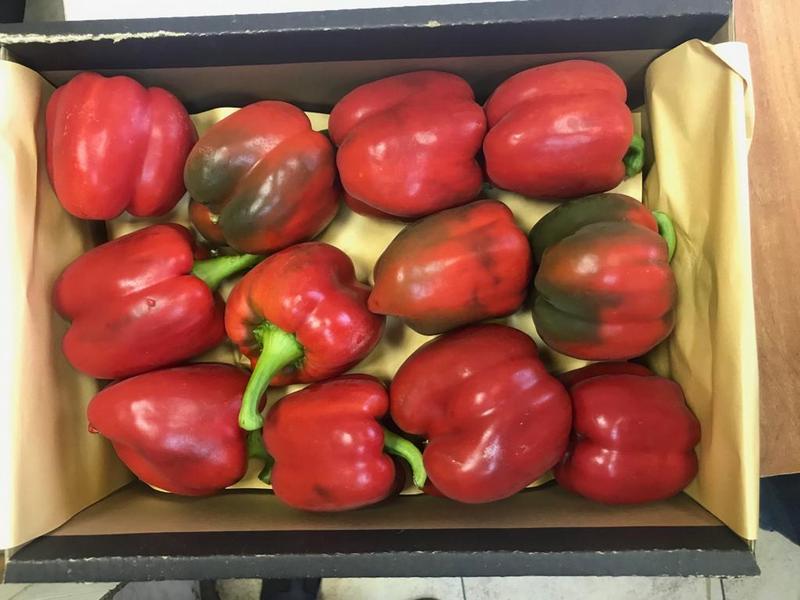 В Дагестан не пропустили 12 тонн зараженных овощей из Ирана