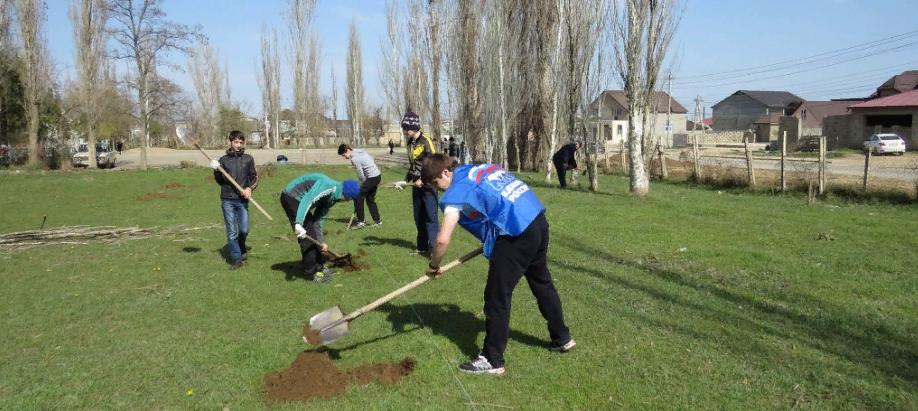 В Дагестане в рамках экологической акции посажено более 20 тысяч деревьев
