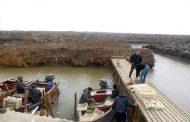 Более 3,5 тысячи тонн рыбы выловлено в Дагестане с начала 2019 года