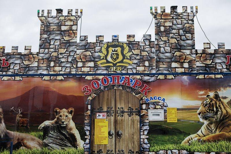 Гастролирующий в Махачкале зоопарк был пойман на воровстве электричества