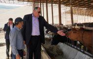 Абдулмуслим Абдулмуслимов оценил перспективы сельхозпредприятий Карабудахкентского района