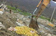 Вице-премьер РФ высказался против уничтожения продуктов питания