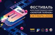 О фестивале кино «Золотой теленок»