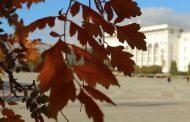 Синоптики рассказали, какая погода ожидается осенью в Махачкале
