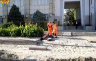 На центральной площади Махачкалы будут высажены новые деревья и кустарники