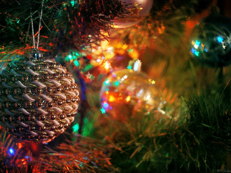 Мэрия Махачкалы рассказала о программе празднования Нового года в столице