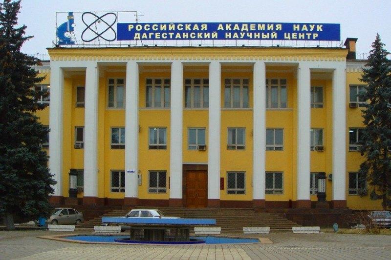 Председателем ДФИЦ РАН избран Акай Муртазаев