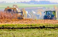 Полевые работы в Дагестане пройдут на площади 320 тысяч гектаров