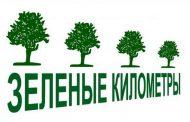Лесничества готовятся к лесопосадочным работам в рамках акции «Зеленые километры»