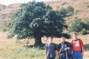 Комитет по лесному хозяйству Дагестана определит в апреле «Дерево года»